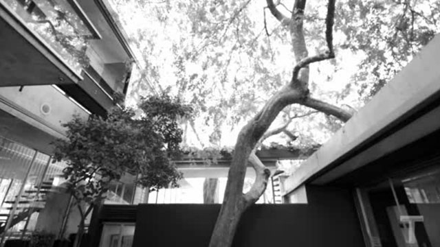 The House of Neutra by David Netto // The New York Times [TV].