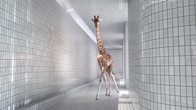 5m80: High Diving Giraffes by Cube Creative [TV].